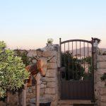 OUTSIDE AREAS, VEGETABLE GARDEN & DELICACIES